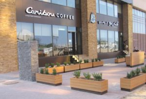 Caribou-Coffee-HL-Gold-Gray